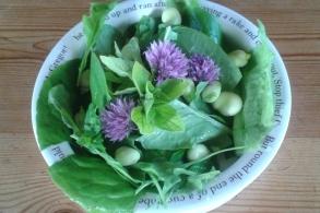 bowl-of-herbs.jpg